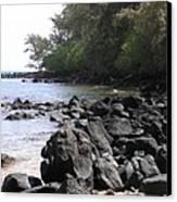 Lava Rocks Canvas Print