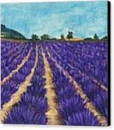 Lavender Afternoon Canvas Print by Anastasiya Malakhova