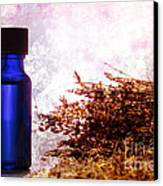 Lavender Essential Oil Bottle Canvas Print by Olivier Le Queinec