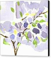 Lavender With Missouri Dogwood In The Window Canvas Print