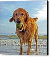 Lazy Summer Days At The Beach Canvas Print by Nishanth Gopinathan