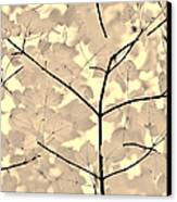 Leaves Fade To Beige Melody Canvas Print by Jennie Marie Schell