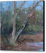 Leiper's Creek Study Canvas Print