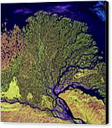 Lena River Delta Canvas Print by Adam Romanowicz