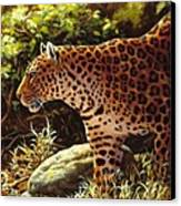 Leopard Painting - On The Prowl Canvas Print by Crista Forest