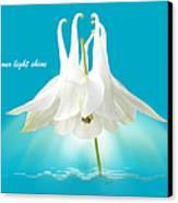Let Your Light Shine Canvas Print by Gill Billington