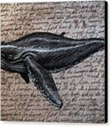 Leviathan Canvas Print by Mark Zelmer