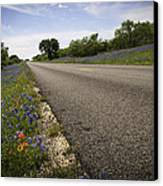 Life Is A Highway  Canvas Print by Lynn Bauer