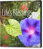 Lifes Blessings Canvas Print by Eva Thomas