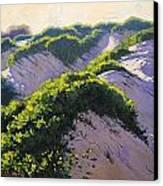 Light Across The Dunes Canvas Print