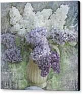 Lilac Canvas Print by Jeff Burgess