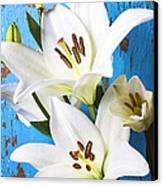 Lilies Against Blue Wall Canvas Print