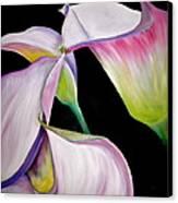 Lilies Canvas Print by Debi Starr