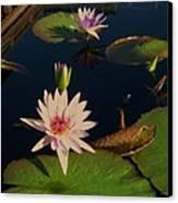 Lily White Monet Canvas Print