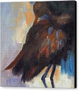 Limpkin Canvas Print by Susan Hanlon