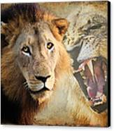 Lion Profile Canvas Print by Ronel Broderick