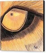 Lions Eye Canvas Print by Bav Patel