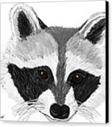 Little Bandit - Raccoon Canvas Print by Elizabeth S Zulauf