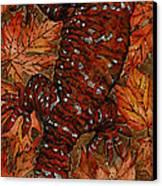 Lizard In Red Nature - Elena Yakubovich Canvas Print by Elena Yakubovich