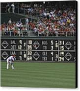 Lonely In Center Field Canvas Print by Dave Hall
