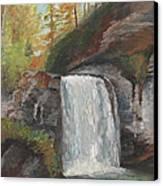 Looking Glass Falls Canvas Print by William Killen