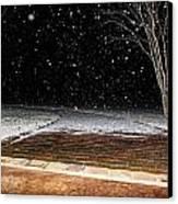 Louisiana Winter Canvas Print by Hannah Miller
