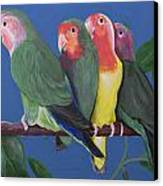 Love Birds Canvas Print by Kathy Weidner