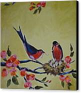 Love Birds Nesting Canvas Print by Kelley Smith