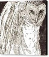 Love Owl Canvas Print