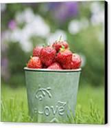 Love Strawberries Canvas Print