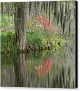 Lowcountry Series I Canvas Print