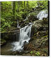 Lower Amicalola Falls Canvas Print by Debra and Dave Vanderlaan