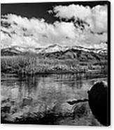Lower Owens River Canvas Print by Cat Connor