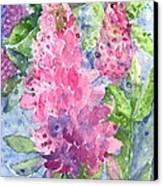 Lupine Time Canvas Print
