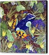 Madagascar Mantella Canvas Print by Lynda K Boardman