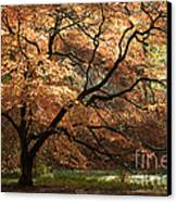Magnificent Autumn Canvas Print by Anne Gilbert
