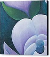 Magnificent Magnolia Buds Vertical Pink Flower Bud Closeup Textu Canvas Print by Christina Rahm