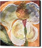 Magnolia Orioles Canvas Print by Debbie Nester