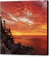 Maine's Bold Coast Canvas Print by Chad Tracy