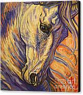Majestic Lipizzan Canvas Print