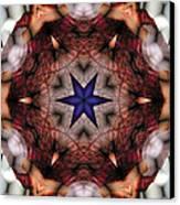 Mandala 14 Canvas Print by Terry Reynoldson