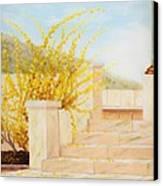 Marble Steps Canvas Print