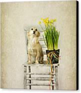 March Canvas Print by Elena Nosyreva