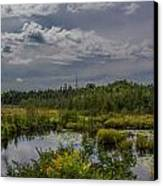 Marsh Under The Clouds Canvas Print