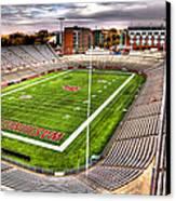 Martin Stadium At Washington State Canvas Print by David Patterson