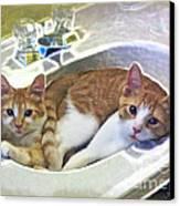 Mary's Cats Canvas Print by Joan  Minchak