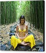 Meditation In Bamboo Forest Canvas Print