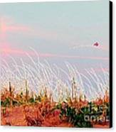 Memorial Day By The Sea Canvas Print by Susan Carella