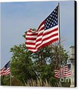 Memorial Day Flag's With Blue Sky Canvas Print by Robert D  Brozek