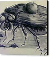 Metamorphosis Canvas Print by Soumya Bouchachi